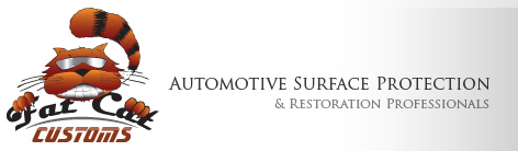 Automotive Surface Protection and Restoration